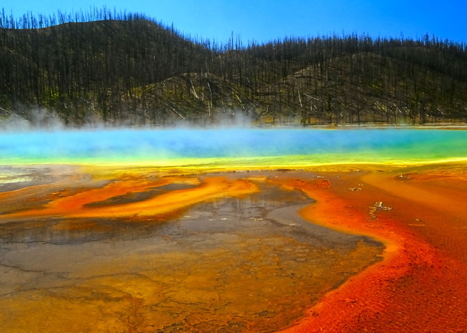 Colorful lake and burnt trees in Yellowstone National Park